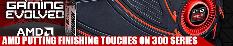 AMD-finishing-touches-300
