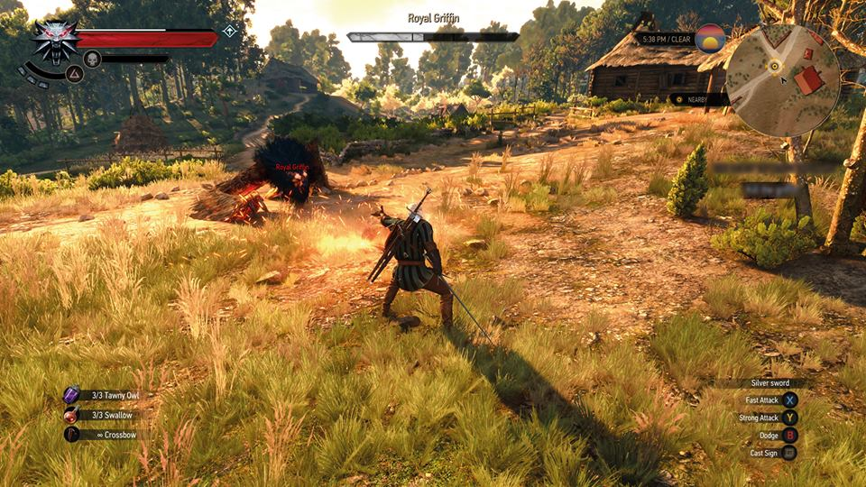 silver sword witcher 3